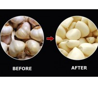 How do you find top garlic peeling machine manufacturers?
