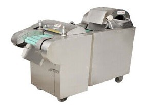 Vegetable & Fruit Processing Machine