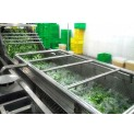 Vegetable Washing Machine Classification